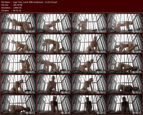Cage%20Time%20Lunch%20With%20Greyhound%20-%2012.02.19.t_m.jpg