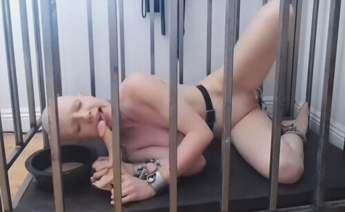Dildo%20Training%20%28Caged%20Lunch%20Edition%29%20-%2001.06.20_m.jpg