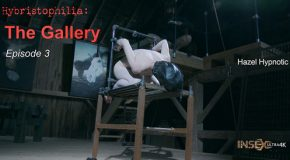 Hybristophilia - The Gallery episode 3
