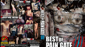 [DDSC-026] Best of Paingate III